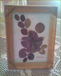 slike od sušenog cveća 2